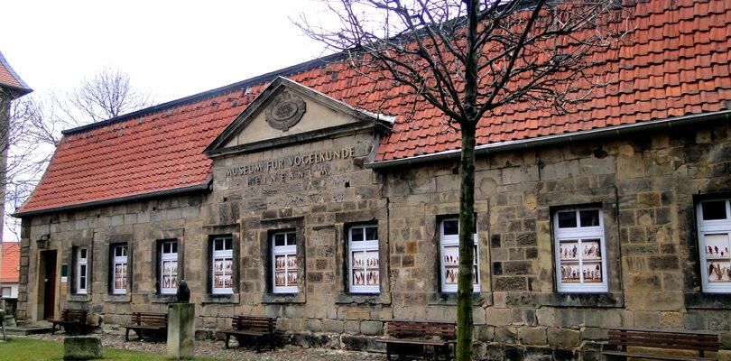 Naturkundemuseum Heineanum Halberstadt