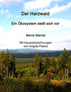 Der Harzwald von Bernd Sternal