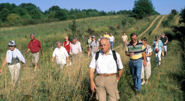 Wandern am Grünen Band, Foto: Nationalpark Harz