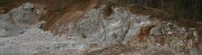 Steinbruch am Pfaffenholz, Aufnahme Michael Reinboth
