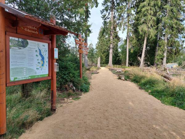 Foto: Nationalpark Harz